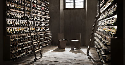 knihovna vína