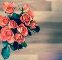 roses-690085_640.jpg