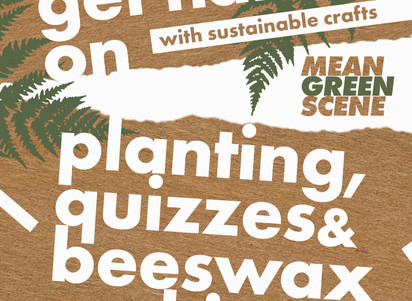 Mean Green Scene to develop sustainability skills in youth