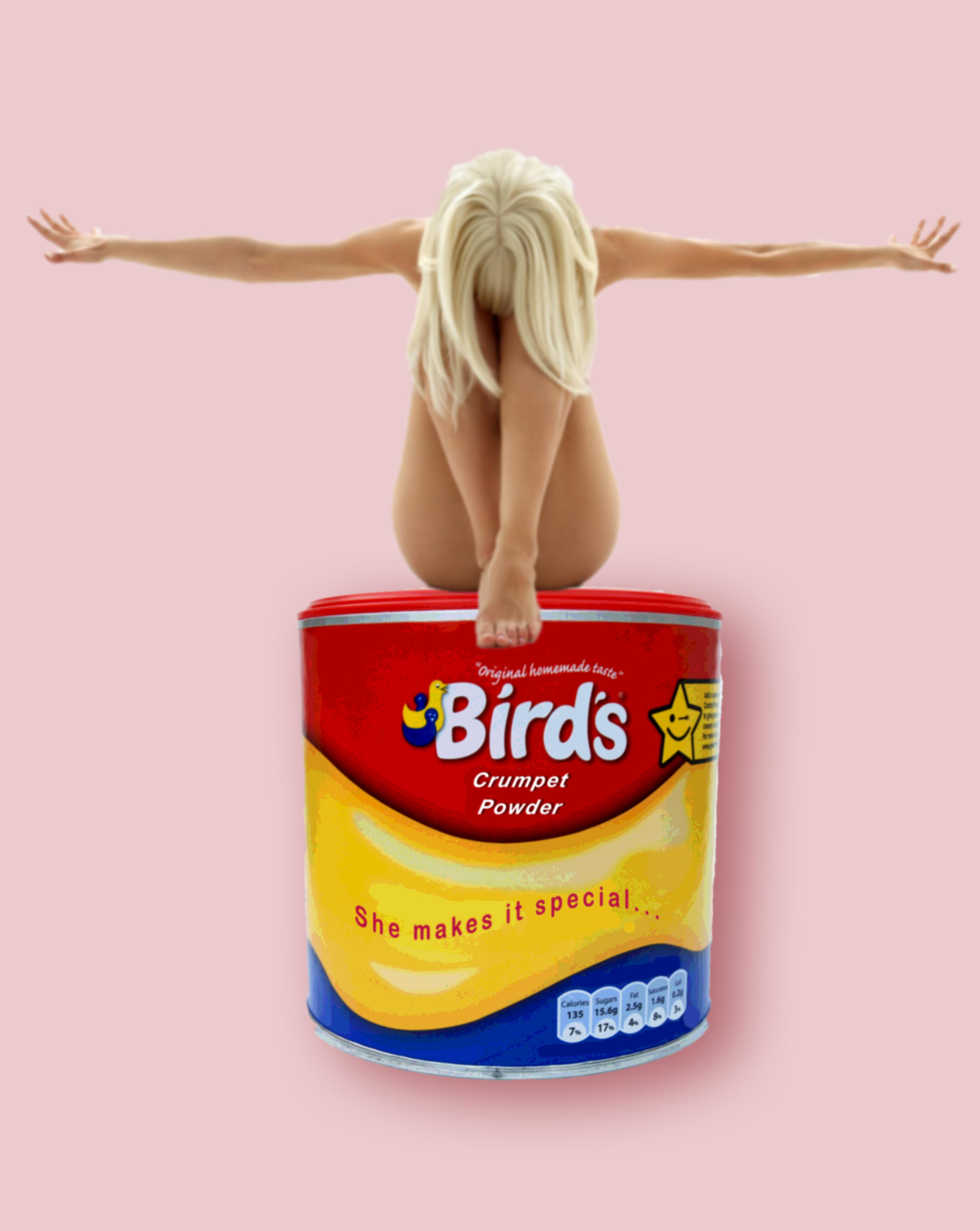 Birds ver 3.jpg