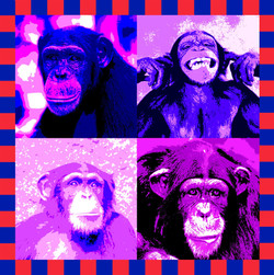 Chimp Composite final 28 may 2010 (Custom).jpg
