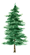 Tree-02.png