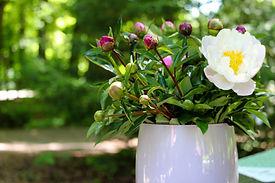 bouquet-4252450.jpg