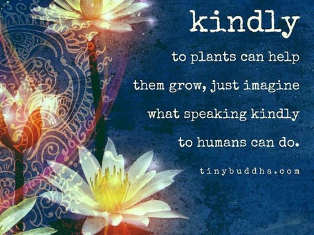 Kindness Is The Key To Love.