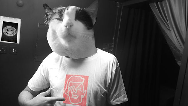 catface bunny t shirt.jpg