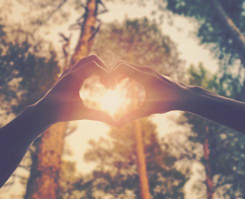 hands in shape of love heart.jpg