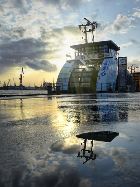 Harbour Puddles