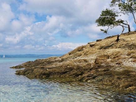 Porquerolles, l'île aux mille beautés