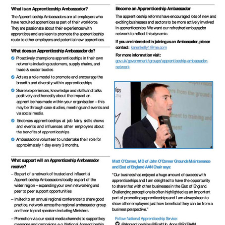 What is an Apprentice Ambassador?