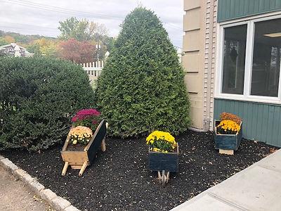 outdoor garden.jpg