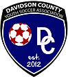 DCYSA_Logo_v1(300).jpg