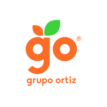 Propuestas Logo Grupo Ortiz Final-07-01.