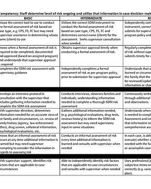 SDM Risk Assessment Competency .jpg