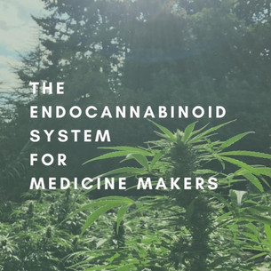 The Endocannabinoid System for Medicine Makers