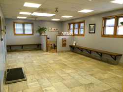 Waiting Room- Dog Side
