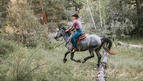 Preparing for a Warm Weather Horseback Ride