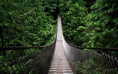 #5 amazing suspension bridges - book a tour through an agent for safety.jpg