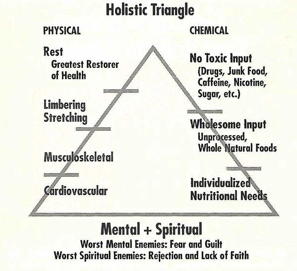 The Holistic Triangle
