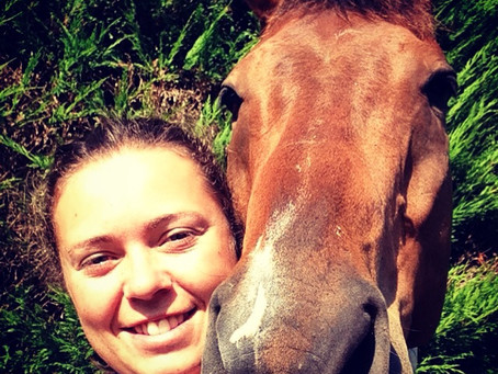 An Animal physiotherapists first blog!