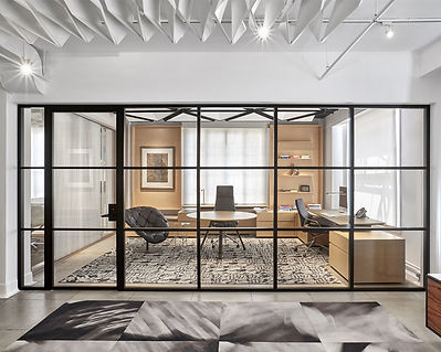 MIMO_black_anodized_with_horizontal_mullions_and_framed_pivot_door.jpg