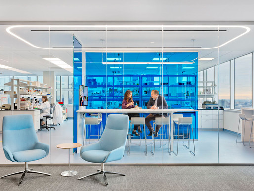 5 Reasons Why to Choose Glass Walls