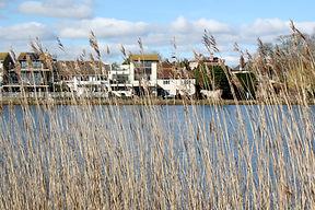 Emsworth Through the Reeds.jpg