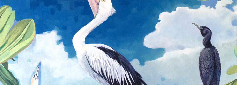 Prophesy of an Australian Kingfisher