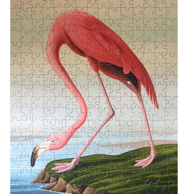 Reinhard's Puzzle Audubon