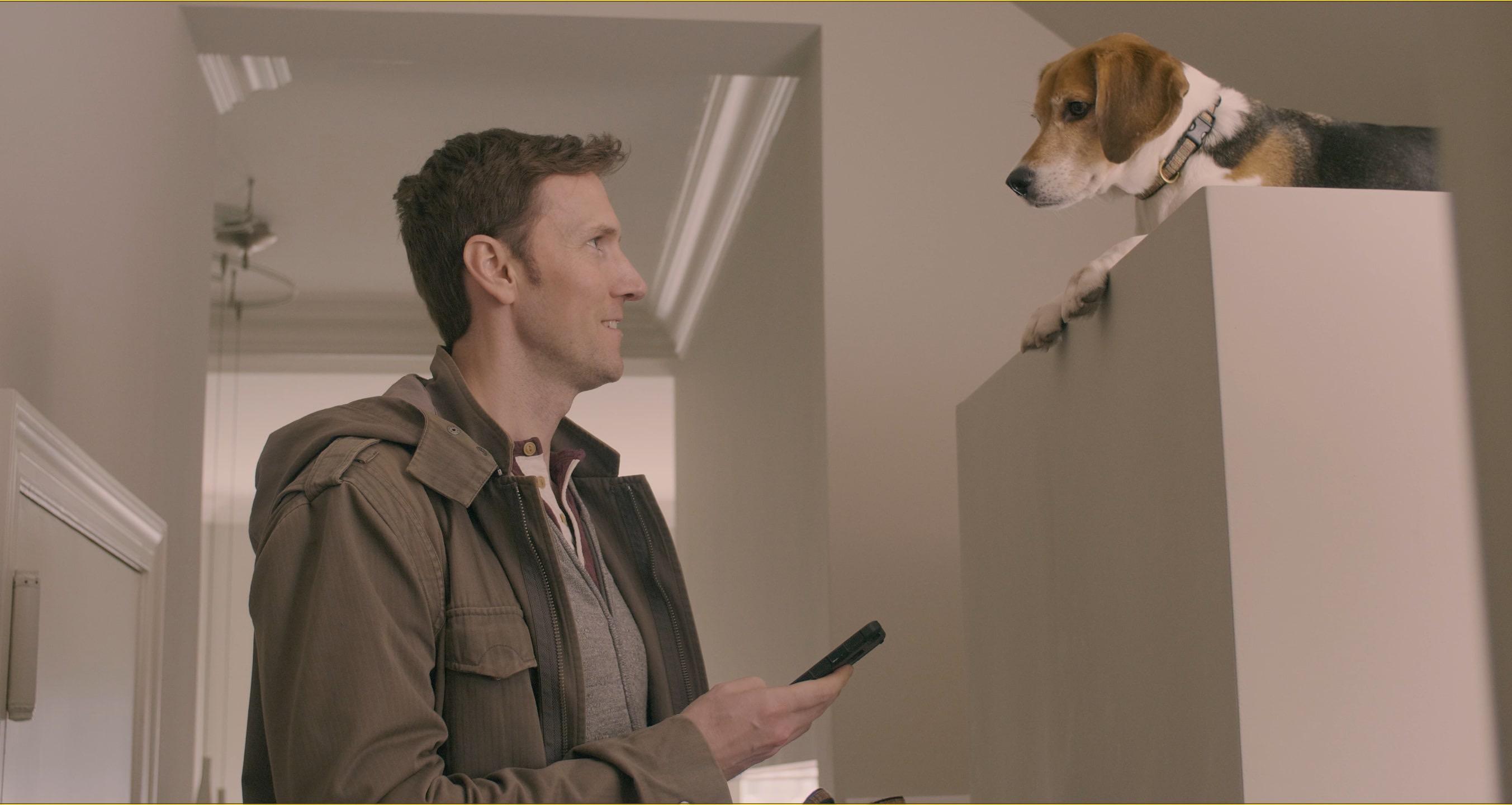 Dogmate (Tim)
