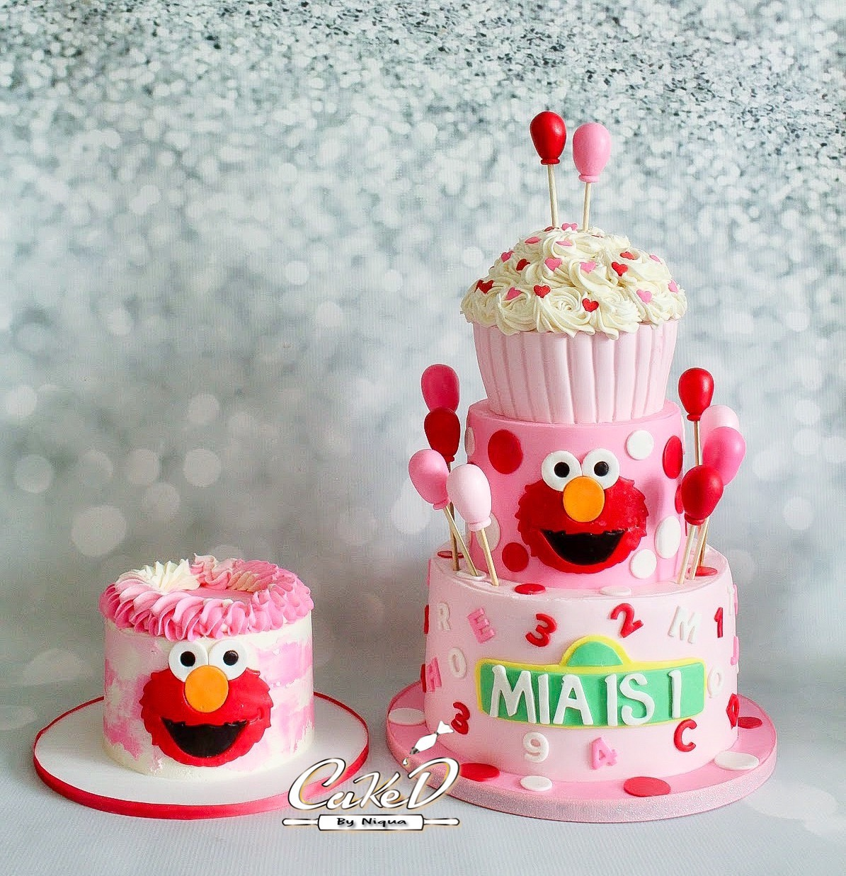 Pink Elmo Cake and Smash Cake