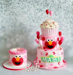 Pink Elmo Cake and Smash Cake