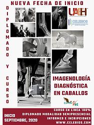 DIPLOMADO_EN_IMAGENOLOGÍA_DIAGNÓSTICA_