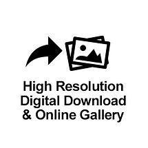 High Resolution Digital Download & Online Gallery