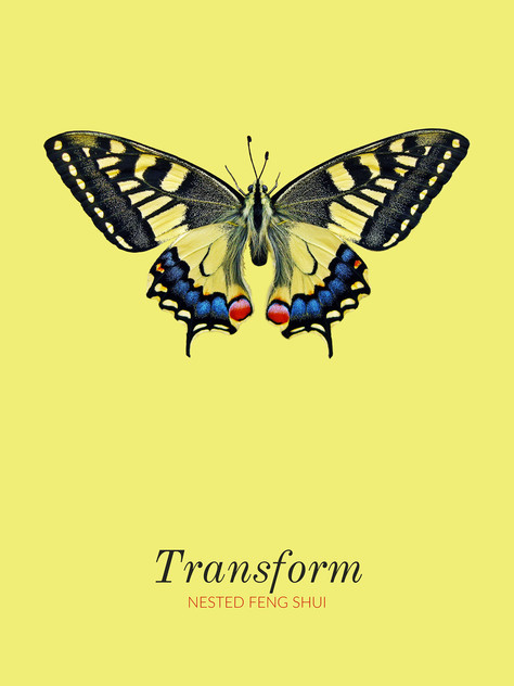 Transform_POSTER_Butterfly_NestedFengShui