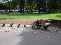 Ducks! 9:9:14.jpg