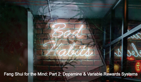 Feng Shui for the Mind — Part 2 of 3: Dopamine & Variable Rewards Systems
