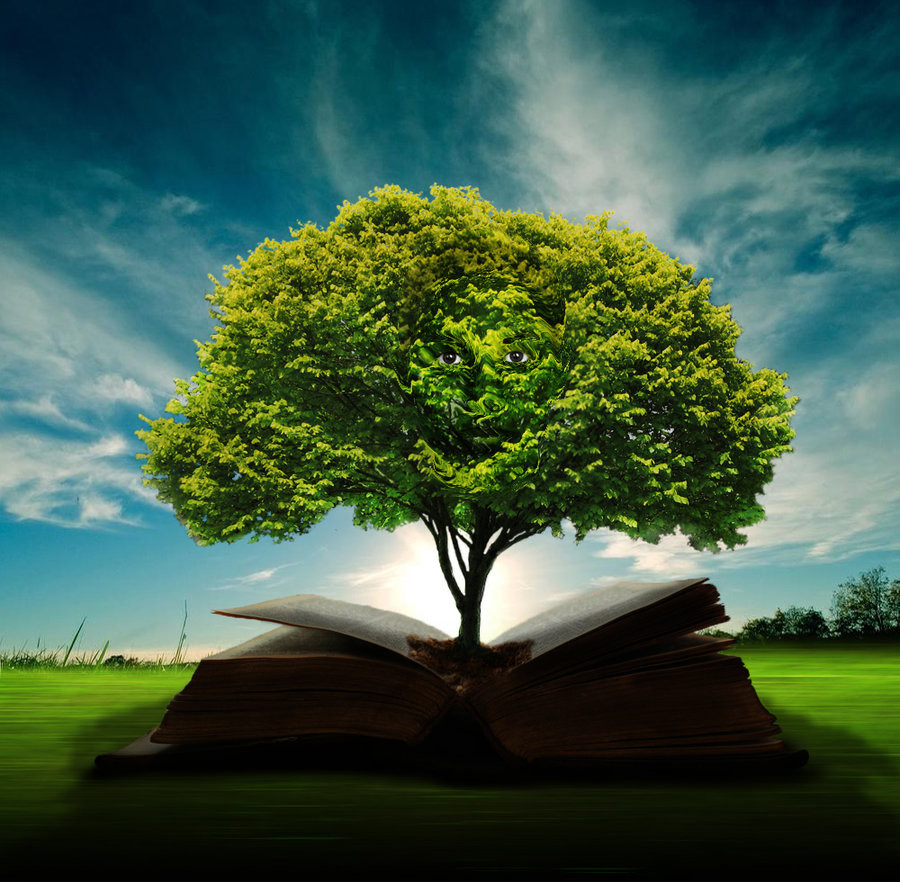 wisdom_tree_by_doug222-d3f0ozt.jpg