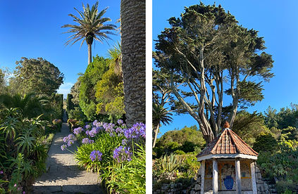 Abbey gardens Scilly Isles