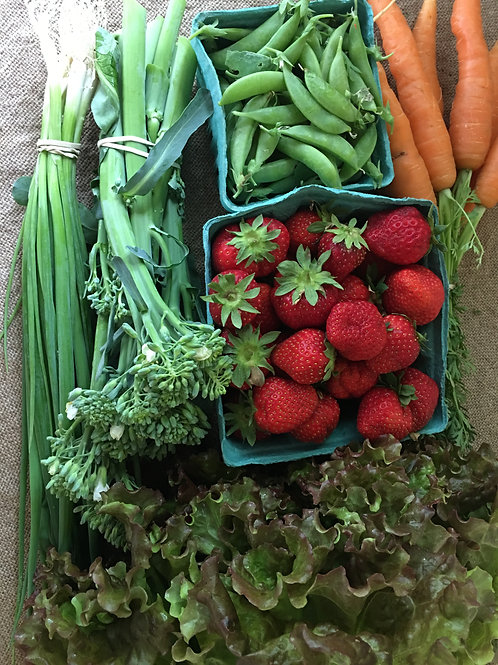 Seasonal produce collection  (small)