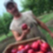 berry farm.jpg
