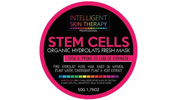 rose stem cell.jpg