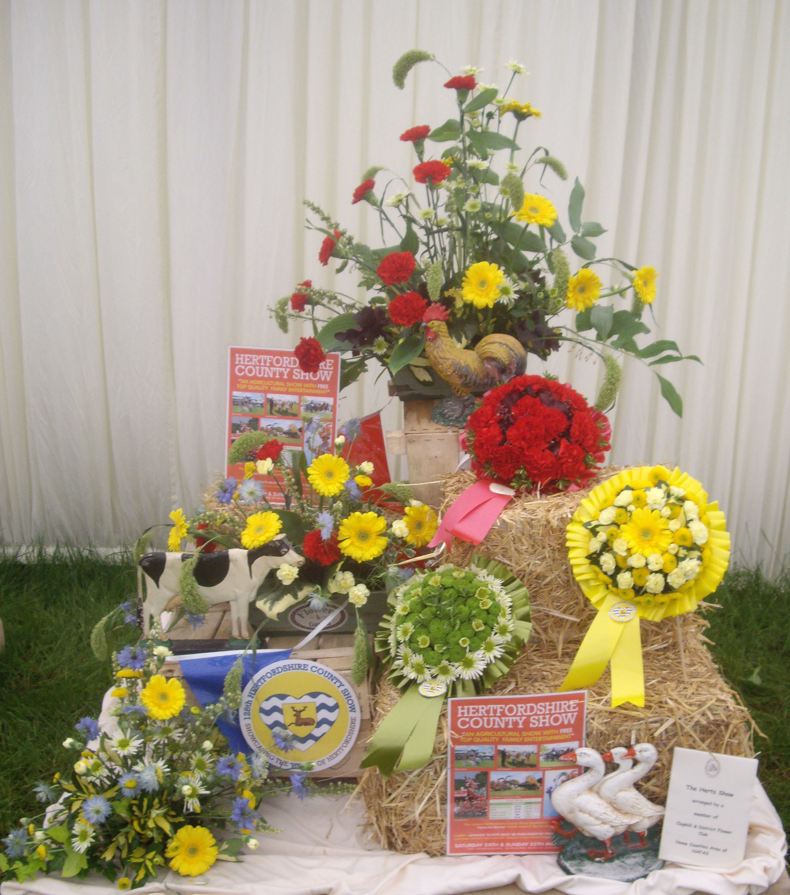 Herts County Show May 2014