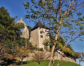 Ancienne maison-forte de Chanay (Cruet), source internet