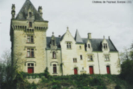 Château de Peyraud à Bonzac (33), source X Gille