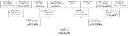 Ascendance de Pere Caselles, Source X Gille
