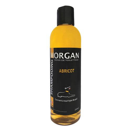 Shampoing protéiné Abricot  Morgan
