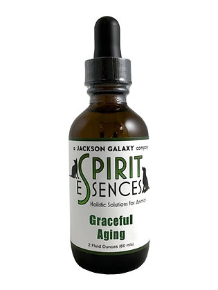 JGSE - Graceful Aging