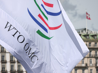 Carta abierta a la OMC