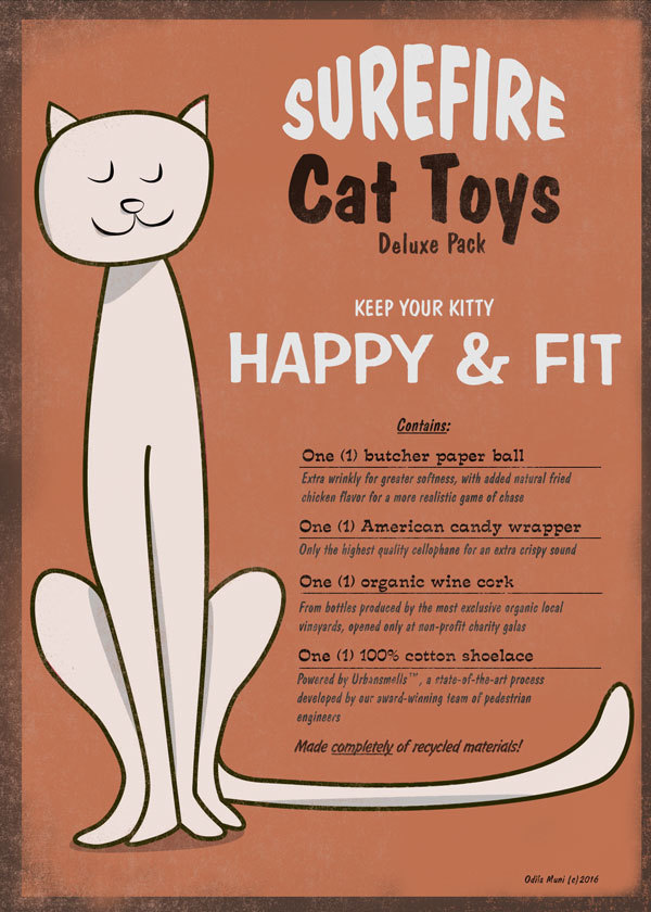 Cat toys poster