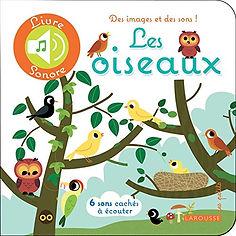illustration jeunesse les oiseaux, livre sons, illustrateur : Jean-Sébastien Deheeger